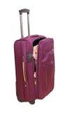 Gato em uma mala de viagem Foto de Stock