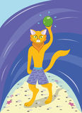 Gato em uma praia Imagens de Stock Royalty Free