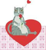 Gato en amor Foto de archivo