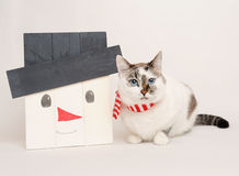 Gato en bufanda con el muñeco de nieve de madera Imagenes de archivo