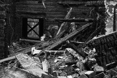 Gato en casa quemada Fotografía de archivo libre de regalías