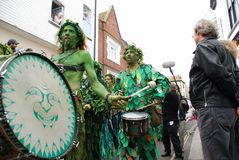 Gato en el festival verde Foto de archivo libre de regalías