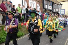 Gato en el festival verde, Hastings Imágenes de archivo libres de regalías