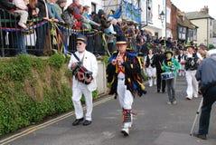 Gato en el festival verde, Hastings Imagen de archivo libre de regalías