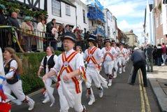 Gato en el festival verde, Hastings Imagen de archivo