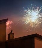 Gato en el tejado que mira los fuegos artificiales el víspera del ` s del Año Nuevo Imagen de archivo