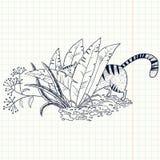Gato en la hierba