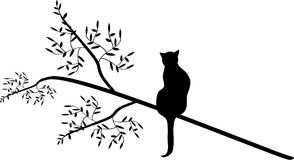 Gato en un árbol Foto de archivo libre de regalías