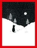 Gato en un campo Nevado Imagen de archivo
