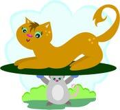 Gato en un disco del ratón Foto de archivo libre de regalías