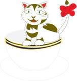 Gato en una taza Fotografía de archivo libre de regalías