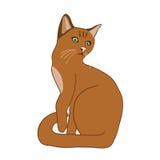 Gato en vector Fotografía de archivo