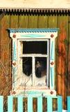 Gato en ventana Imagenes de archivo