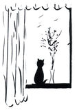Gato en Windowsill Imagen de archivo