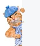 Gato enfermo Fotografía de archivo
