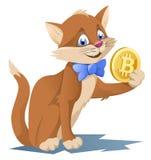 Gato engraçado em um laço que guarda o símbolo do bitcoin Imagens de Stock