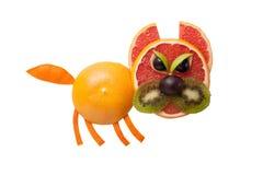 Gato enojado hecho de frutas Imagenes de archivo