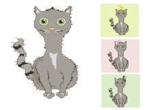 Gato-gato-gato Imagem de Stock Royalty Free