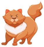 Gato gordo Imagen de archivo libre de regalías