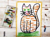 gato gordo del jengibre Foto de archivo libre de regalías