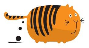Gato gordo el cagar Fotografía de archivo