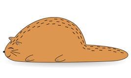 Gato gordo vermelho bonito Mentiras do animal de estimação O animal dorme docemente e sorri imagem dos desenhos animados Ilustra? ilustração royalty free