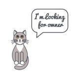 Gato gris con la burbuja y decir del discurso Imágenes de archivo libres de regalías