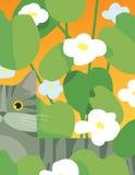 Gato gris con las flores Imagen de archivo