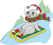 Gato gris en el trineo Imagenes de archivo