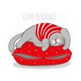 Gato gris en la almohada roja Imagen de archivo libre de regalías