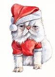 Gato gruñón de la Navidad Fotografía de archivo