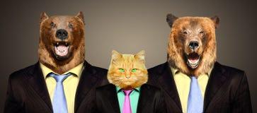 Gato guardado por dos osos en trajes de negocios fotografía de archivo libre de regalías