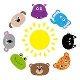 Gato, jaguar, cão, hipopótamo, elefante, urso, rã, coala Sol do Roundelay Cara principal animal do jardim zoológico Jogo de carac Imagens de Stock Royalty Free