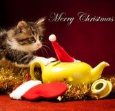 Gato joven que juega con los ornamentos de la Navidad Imagen de archivo