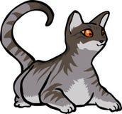 Gato lindo con gris marrón divertido elegante del fure liso libre illustration