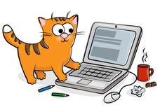 Gato lindo con la computadora portátil Fotografía de archivo libre de regalías