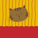 Gato lindo en fondo amarillo y rojo Imagenes de archivo