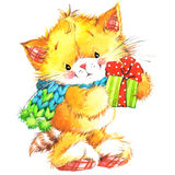 Gato lindo Gato de la acuarela y fondo divertidos de la Navidad Fotos de archivo libres de regalías