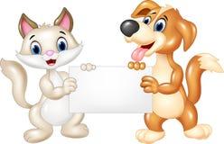 Gato lindo y perro que llevan a cabo la muestra en blanco Fotos de archivo