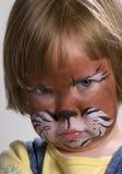 Gato mal-humorado Imagens de Stock