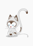 Gato mal-humorado Imagens de Stock Royalty Free