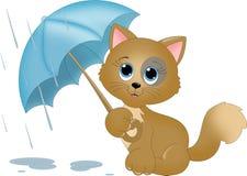 Gato na chuva Fotos de Stock Royalty Free