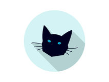 Gato negro Fotografía de archivo