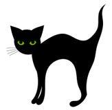 Gato negro aislado Fotos de archivo libres de regalías