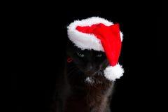Gato negro con el sombrero de Papá Noel que mira abajo Imagen de archivo libre de regalías