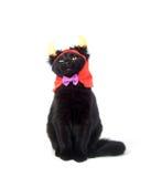 Gato negro con los claxones del diablo Imágenes de archivo libres de regalías