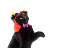 Gato negro con los claxones del diablo Fotos de archivo libres de regalías