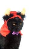 Gato negro con los claxones del diablo Fotografía de archivo libre de regalías