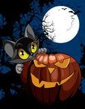 Gato negro de la historieta con la calabaza en la noche debajo de la luna Fotografía de archivo