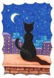 Gato negro en el parapeto de la casa en la noche y la luna imágenes de archivo libres de regalías